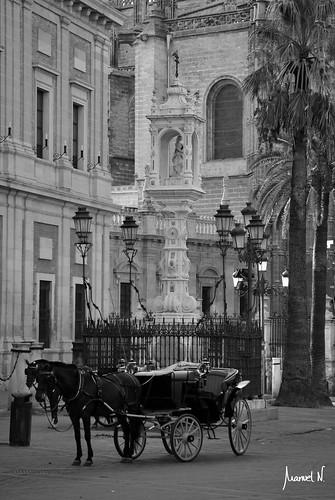 Estampa Sevillana (plaza del Triunfo)