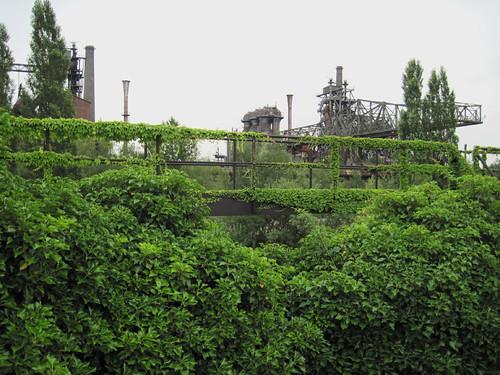 Landschaftspark Duisburg-Nord - Nature comes back