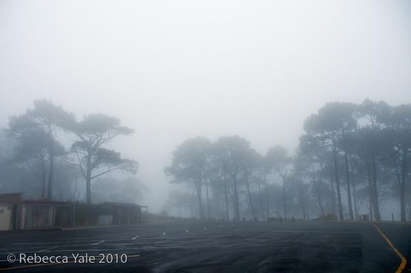 RYALE_Cape_Town-165