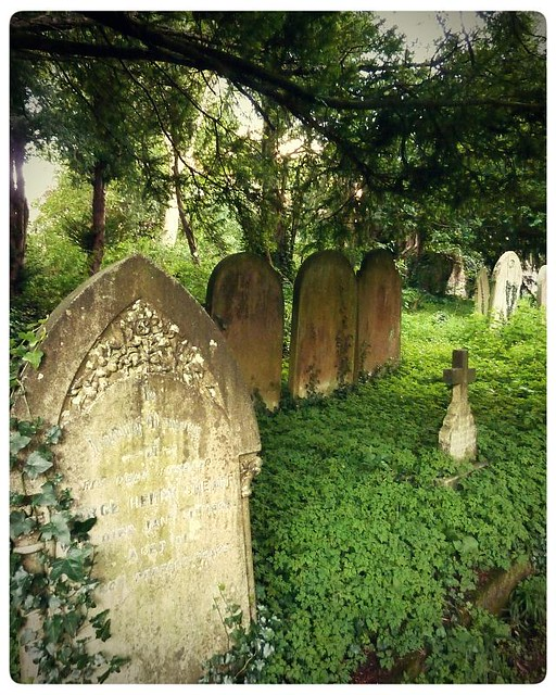 Chilham ~ overgrown cemetery