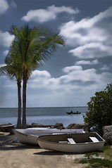 Key Largo (Maltenburg) Tags: blue trees beach boats nikon key palm breeze largo rowboats d90