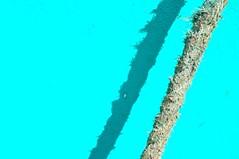 Be Frayed.  Be Very, Very Frayed. (Joanne Dale) Tags: light shadow canada newfoundland turquoise stjohns rope fraying frayed nikond90 joannedale befrayedbeveryveryfrayed