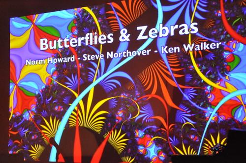 Butterflies & Zebras at Club SAW