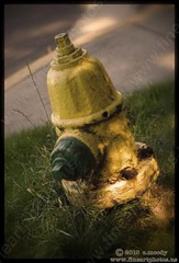 my friend, stumpy (chuckmoody) Tags: oregon hydrant ashland