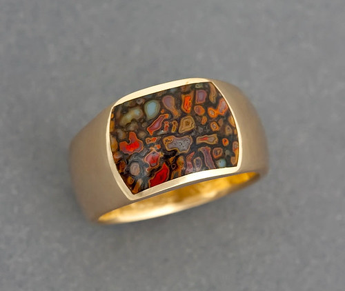 14k Gold Gem DInsoaur Bone Inlay Ring