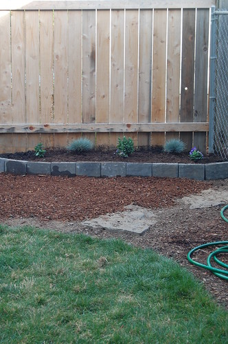 Yard redo - progress