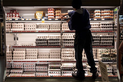 Eggs. Plenty of them. (Alex Barth) Tags: color fridge egg supermarket shelf dcist eggcarton restocking gf1 alotofeggs eggshelf supermarketstaff stockclerk supermarketpictures plentyofeggs