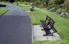 pgmc544 (the underlord) Tags: park wood green public grass marina bench path cosina bessa sunday rangefinder 200asa fujifilm parkbench asphalt southport pathway merseyside fujicolor jupiter8 superia200 colorskopar254 r4a voigtlanderbessar4a