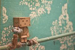 http://danboard.ru/ (0905ru) Tags: robot box cyborg ltd amazoncojp boxman revoltech danboard