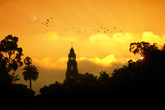 Autumn Sunset (Lee Sie) Tags: california trees sunset sky orange moon birds silhouette clouds nikon view sandiego prado soe balboapark ccl naturesfinest californiatower floridacanyon