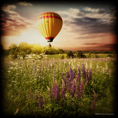 It was like a dream... (Pony girl2 (catching up..again)) Tags: photomanipulation sunrise hotair balloon meadow makeitinteresting artistictreasurechest magicunicornverybest thelittlebookoftreasures