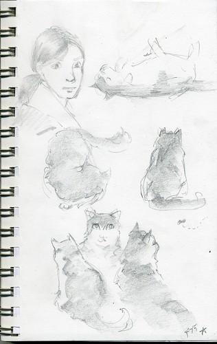sketch254
