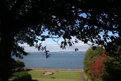 Firth of Forth (ianharrywebb) Tags: firthofforth starbankpark iansdigitalphotos iansdigitalphotosleith yahoo:yourpictures=nature