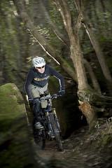 Cyclingo Shoot at Mt Wellington (Mathew Farrell) Tags: bike bush au mountainbike australia trail tasmania ferntree strobist cyclingo