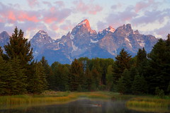 Ducks at Dawn (jwal4503) Tags: nature sunrise dawn nationalpark wildlife grand teton grandtetonnationalpark schwabacherslanding sunriseatschwabacherslanding