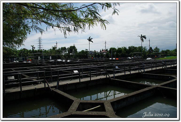 八甲魚場 (5)