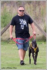Aleksander Czarnecki und Greyhound Cooliskas Bullitt (PL)