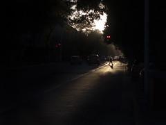 Lonely [Explored #357] (Gerardography) Tags: light sunset luz contrast canon mexico atardecer 50mm guadalajara lonely silueta f18 18 hombre perdido gdl 500d siluete avjuarez avenidajuarez t1i