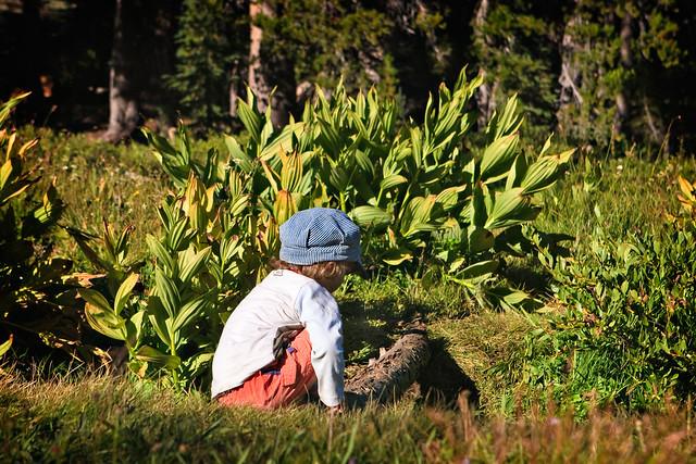 Little Boy Creekside