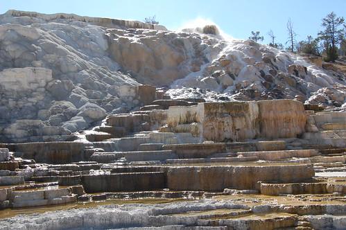Terrace_Mammoth_hot_springs