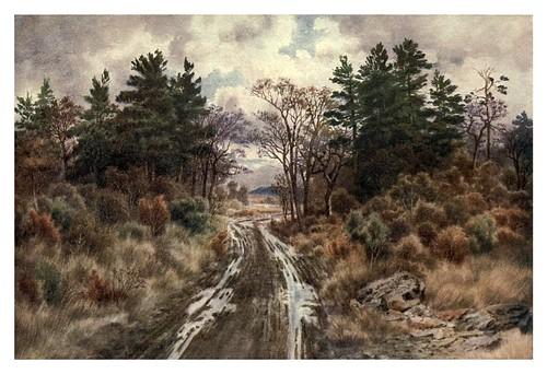004-Carretera cerca de la bahia de Fundy en otoño-Canada-1907- Thomas Martin Mower