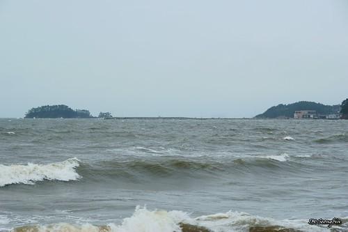 Seawall, Mongsanpo (몽산포항 방파제)