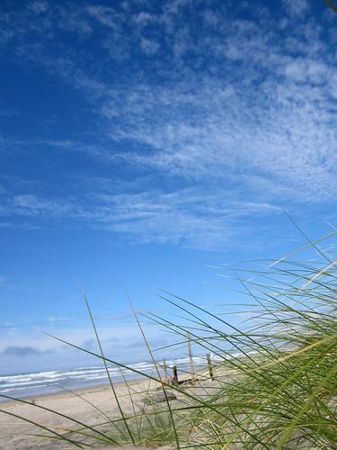 grassandsand