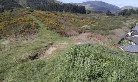 Kapiti coast walkway