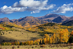 Pike's Peak Fall Grandeur (Fort Photo) Tags: autumn sky mountain mountains color fall nature yellow clouds forest landscape rockies gold nikon bravo colorado view rocky peak victor co vista pikes aspen pikespeak teller 2010 d700