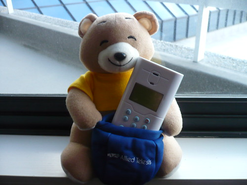 Teddy and skype phone