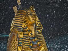 Wearing King Tut's golden sarcophagus in virtual Amarna (Akhetaten) (mharrsch) Tags: gold kingtut ancient egypt sarcophagus 18thdynasty nefertiti akhenaten tutankhamun virtualworld meritaten amarna virtualenvironment mharrsch akhetaten heritagekey