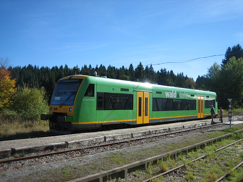 Waldbahn in Spiegelau