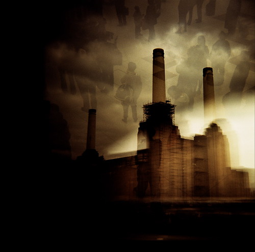 confusion at battersea