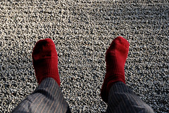 Red Socks (Mark Liddell) Tags: world pink flowers red flower color colour heritage feet me leaves rock socks japan gardens ji garden season cherry temple foot japanese leaf site spring sand ancient sock kyoto meditate dragon blossom buddha buddhist blossoms peaceful historic unesco full momiji changing zen  bloom change  sakura nippon kyouto meditation kouyou  monuments ryoanji nihon koyo ryoan honshu   kyto ryanji ryouanji ryouan   honsh honshuu