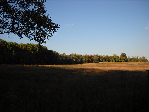 Longwood October 2010 074