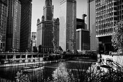 2010-10-16 Chicago River Front