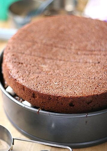 Chocolate-Malt Cake