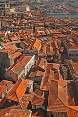 Portugal - Porto - View from Torre dos Clérigos (Harshil.Shah) Tags: portugal torre rooftops porto dos clérigos