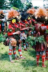 Huli Wigmen, Mt. Hagen Show (Vladimir Nardin) Tags: tribes papuanewguinea mthagenshow huliwigmen