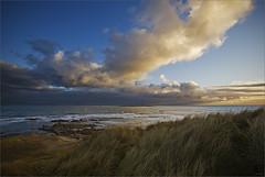 Coquet Island II (JeremyRambles) Tags: uk sea england sky cloud sun lighthouse grass island coast rocks northumberland seal northsea naturereserve puffins gannets landscapephotography coquetisland ©jp2010
