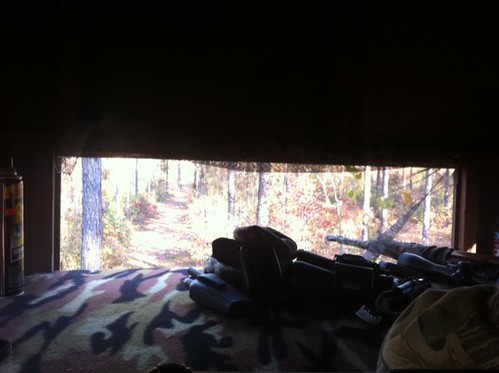 Mels view from her deer stand whitetail deer hunting blog georgia deer hunting