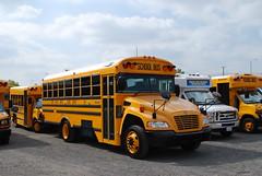 DVUSD 09-1 (crown426) Tags: california vision colton bluebird schoolbus conventional newbus azbussales deathvalleyunifiedschooldistrict