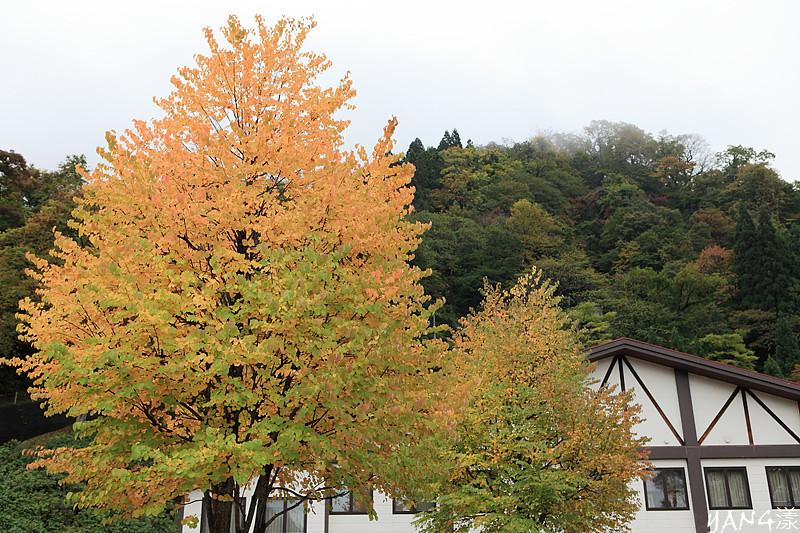雨天的黑部立山行Part2—室堂、美女平、立山駅