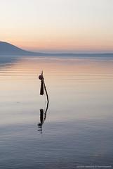 Tramonto sul lago di Varano (Michele Cannone) Tags: sunset italy lake lago tramonto acqua puglia waterscape varano
