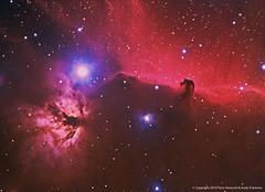 The Horsehead Nebula (Barnard 33) Flame Nebula (NGC 2024) with Ha (Terry Hancock www.downunderobservatory.com) Tags: camera sky mountain night canon wow stars photography mono pier backyard space shed images astro flame observatory telescope nebula astrophotography terry orion astronomy imaging hancock alpha ccd universe instruments ngc2024 amateur ic434 cosmos horsehead celestron hydrogen xsi tmb fli osc astronomer teleskop astronomie byo refractor deepsky barnard33 450d astrofotografie mi250 astrophotographer Astrometrydotnet:status=solved ml8300 Astrometrydotnet:version=14400 130ssf7 tmb92ss Astrometrydotnet:id=alpha20101124896071
