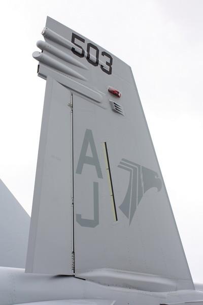 EAA10_EA-18G_35