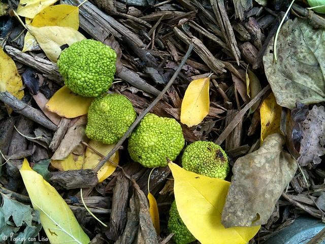 mandarinas verdes