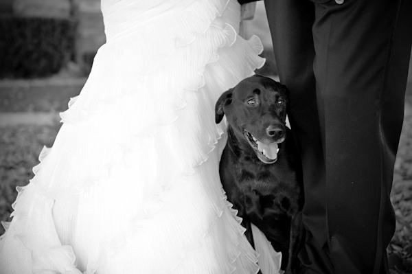 B-H Wedding42
