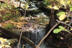 Small Waterfalls (Nicholas Rinaldi) Tags: nature newjersey hiking wildlife nj stokes appalachiantrail sunrisemountain sussexcounty stokesstateforest stokesforest sunrisemt