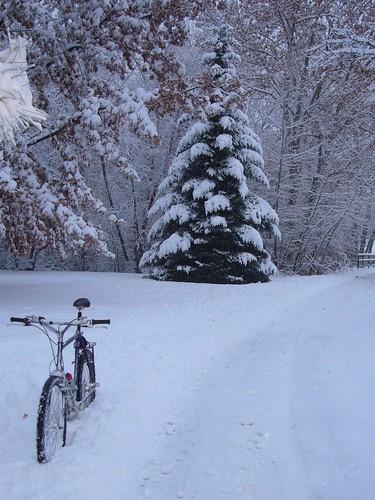 101201 Snow 2